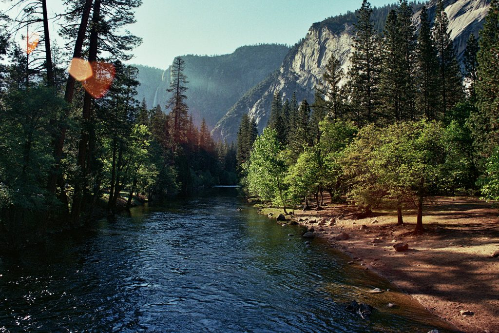 A film photo taken of Yosemite National Park in California
